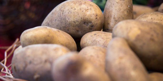 kartoffel-aufbewahrung-box